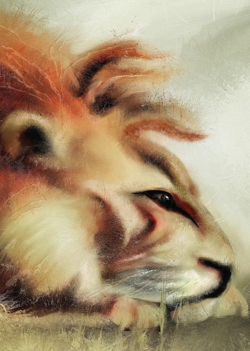 lion-intensemulberry-copy