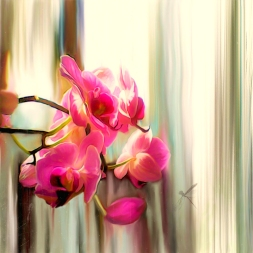 Warm Morning Light Orchids with Dragonfly