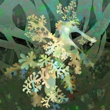 Teal Leafy Sea Dragon TN