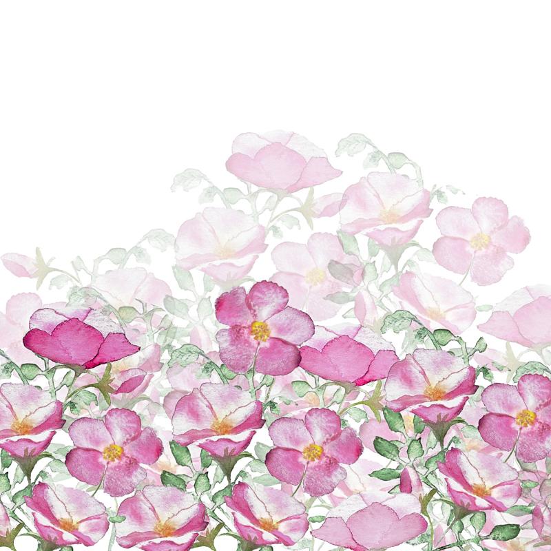 Border Print Beach Roses TN