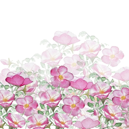 Border Print Beach Roses TN